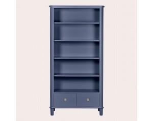 Henshaw Dusky Seaspray 2 Drawer Single Bookcase